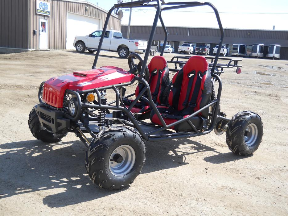 Brand new kids youth 125 cc dune buggy go kart 2 seater on for Go kart montreal exterieur