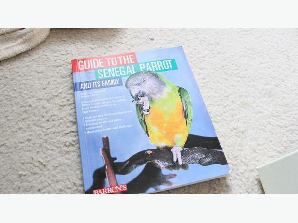 GUIDE TO THE SENEGAL PARROT AND THE FAMILY  BOOK