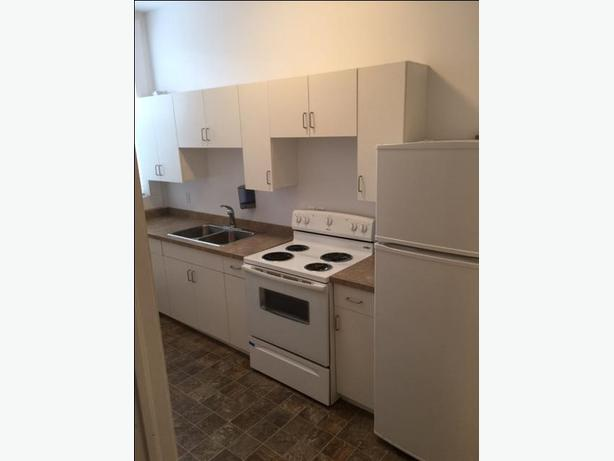 Downtown MJ bachelor suites for rent