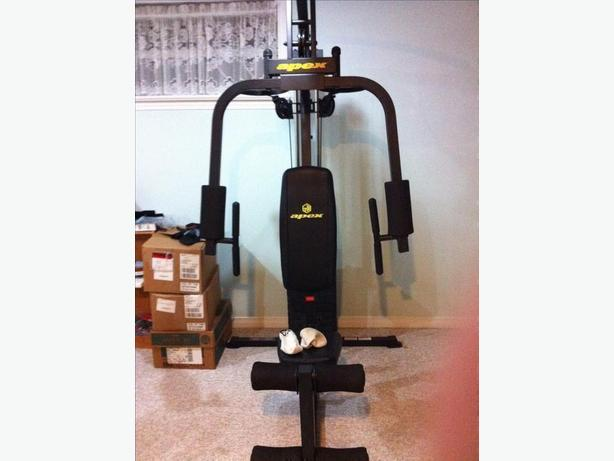 Apex Complete Gym System