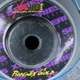 Subwoofers c/w Box ~ Dual 10-inch