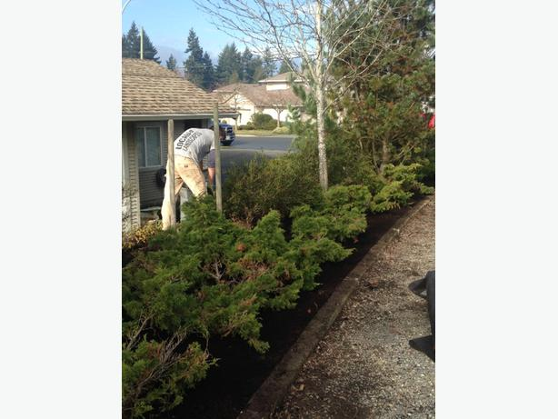 Local Landscapes Offering Quality Work Central Nanaimo