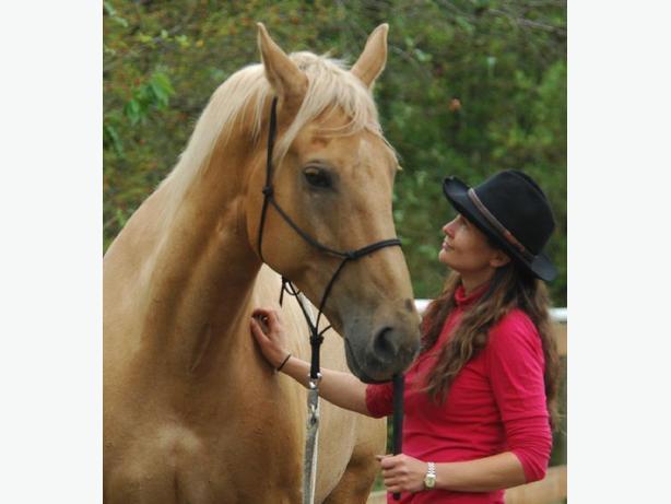 Personal Coaching in Holistic Horsemanship