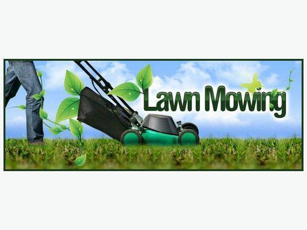 Need your lawn mowed? Let me help