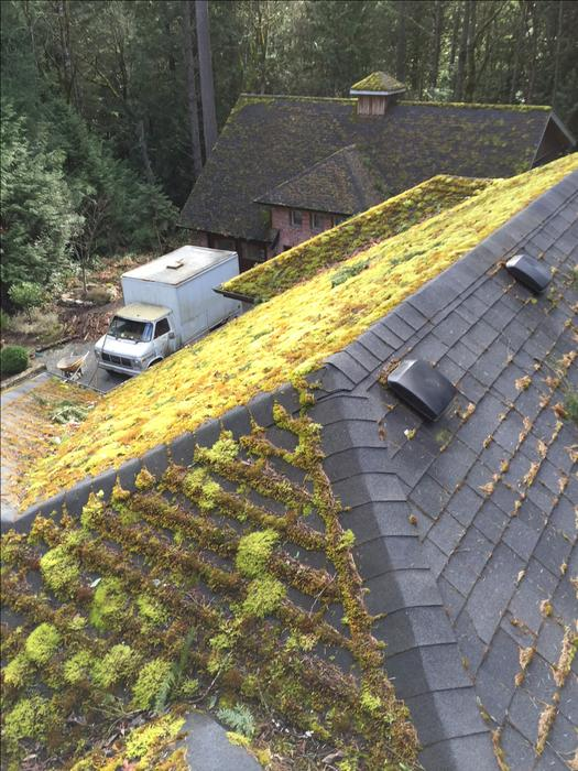 Gutter cleaning - Power washing- Insured- Serving all ...