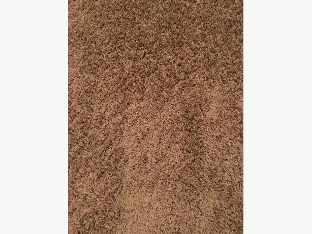 Sand Tone Shag Area Rug Courtenay Courtenay Comox Mobile