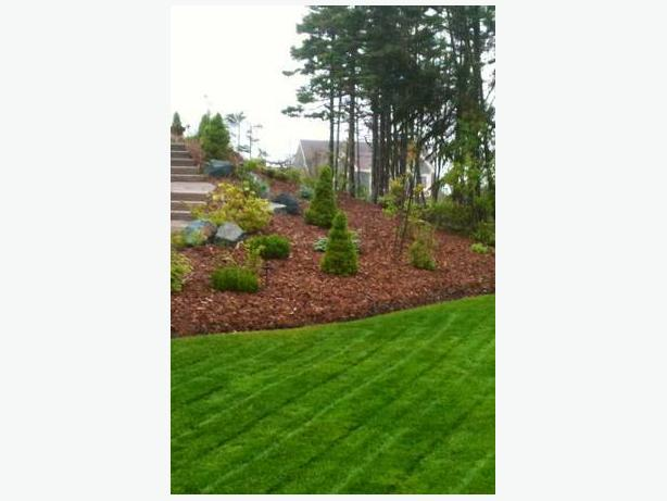 Landscaping Landscape Maintenance Lawn Mowing Top Soil Delivery & More