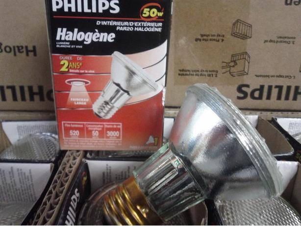 Mini 50 Watt Flood Bulbs