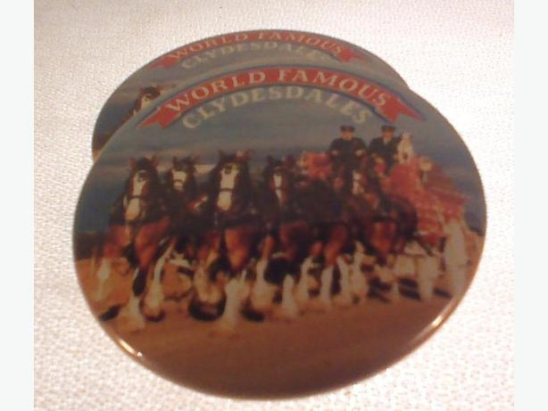 World Famous Clydesdales pinback buttons