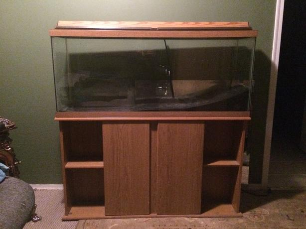55 gallon fish tank with heater filter black sand lake for Fish tank with filter and heater