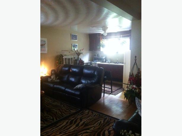 1 Bedroom Basement Apartment June 1st Sault Ste Marie Sault Ste Marie
