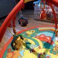 The Redbox Animal Play gym