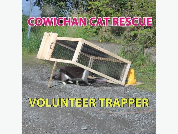 Trapper for Cowichan Cat Rescue's trap-neuter-return program