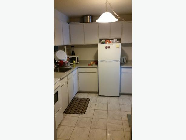 One Bedroom Apartment For Sublet Central Ottawa Inside Greenbelt Gatineau