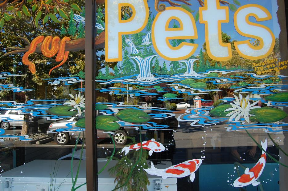 Spring Window Painting Art Murals Victoria City Victoria