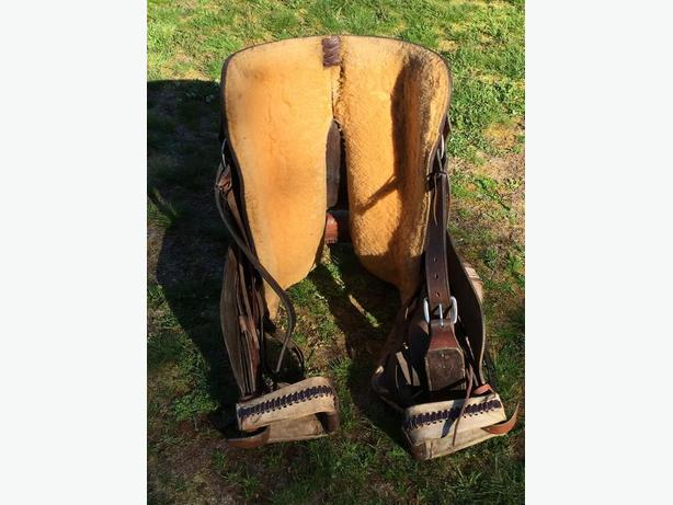 Saddle and complete tack equipment