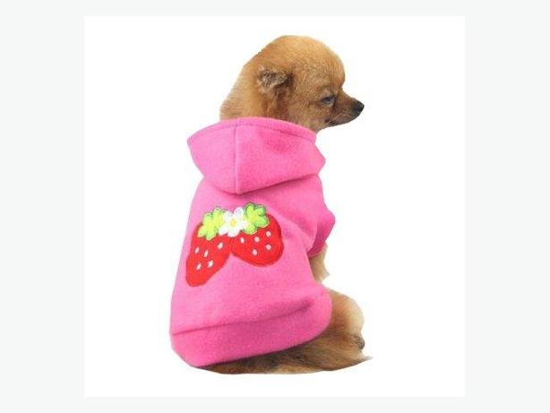 Strawberry dog hoody.