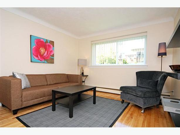 Recently Renovated 1 Bedroom Apartment For Rent Central Ottawa Inside Greenbelt Ottawa Mobile