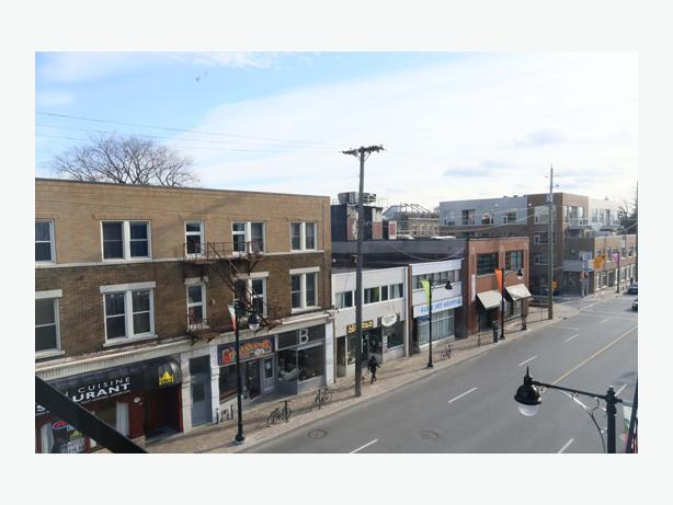 Ottawa Apartments For Rent Glebe
