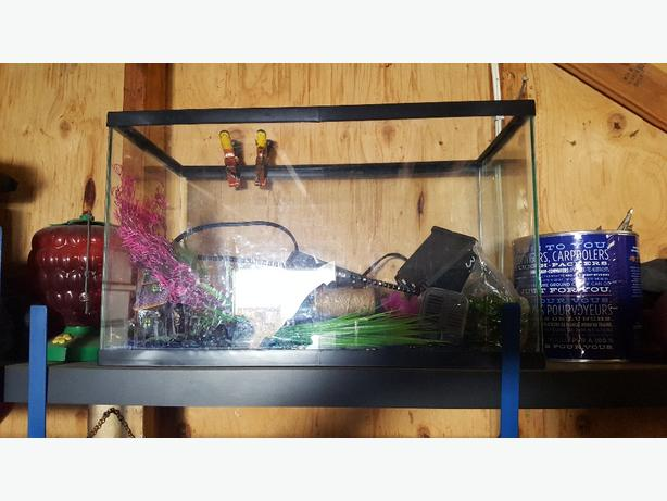 10 gal fish tank with everything south nanaimo parksville for What do you need for a fish tank