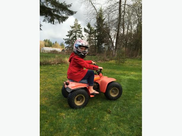 mini suzuki 50 quad and 50 trike