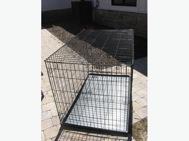 Large Dog Crate For Sale Ottawa