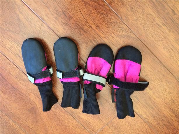Muttlucks dog boots