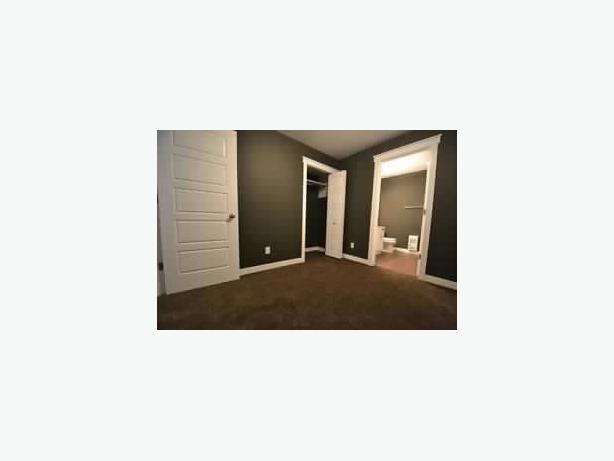Fantastic 1 Bedroom Basement Suite For Rent South Regina Regina Mobile