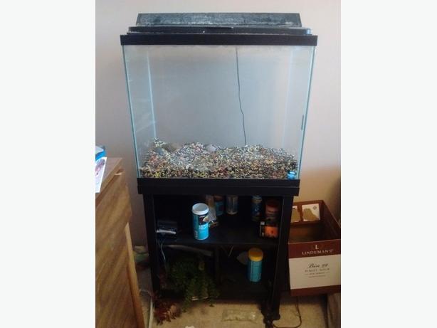 27 gallon aquarium with stand hood and light north regina for Fish tank hoods