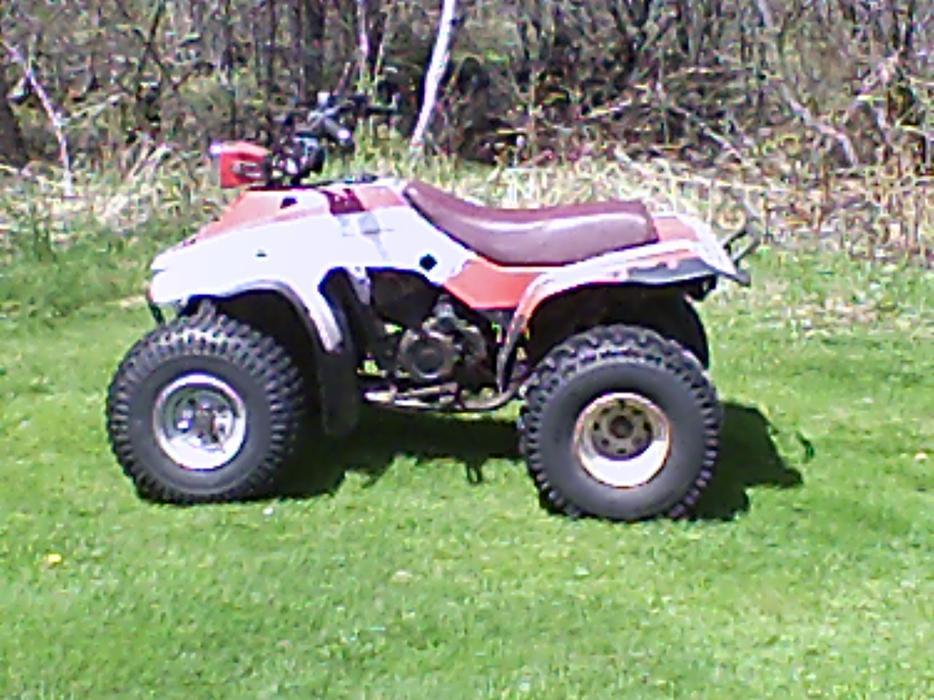 1987 200 Honda Trx Four Wheeler Prince County Pei Mobile