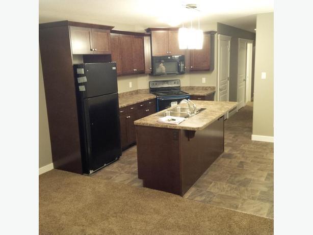 3 bedroom suite for rent
