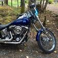 92 Harley Evo Softail Custom (FXSTC)