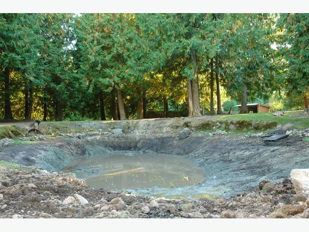 Irrigation or recreational ponds