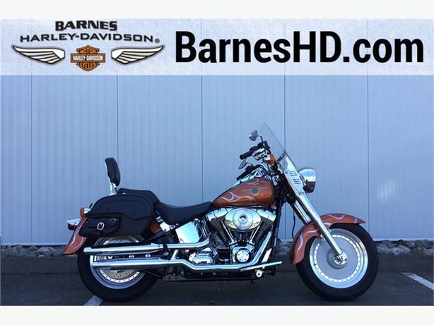 2001 Harley-Davidson® FLSTF