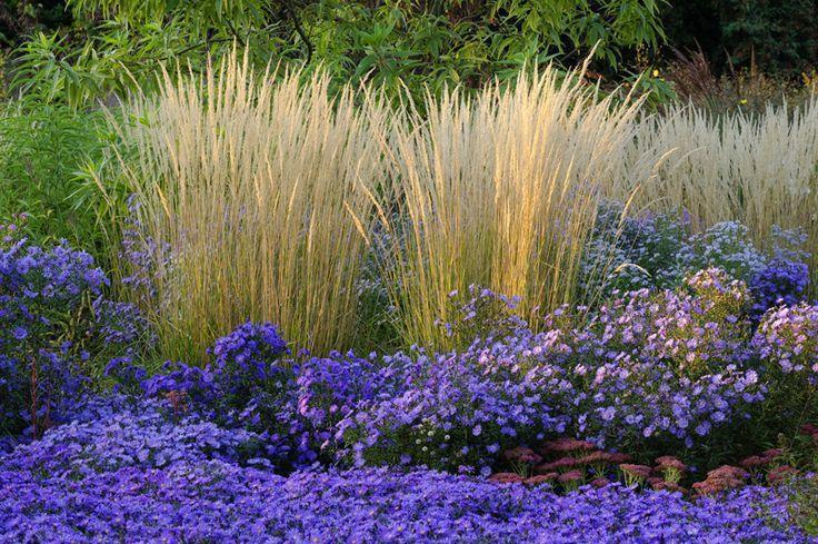 Landscape Design And Plant Design Free Plant Installation