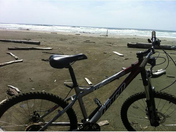 STOLEN, Mt bike