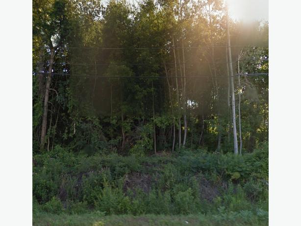 Half acre lot nestled away in Greely