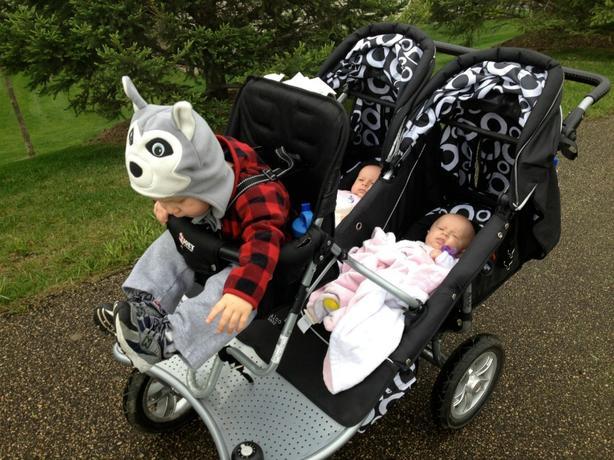 Valco Baby Twin Tri Mode EX & Joey Toddler Seat Oak Bay ...