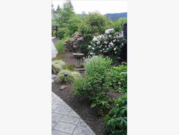 Lake Lawn & Garden Services