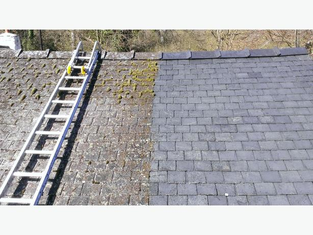 Most affordable gutter cleaning and moss removal in town $60 and up
