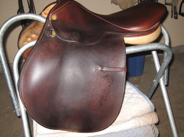 "16.5"" Collegiate saddle"