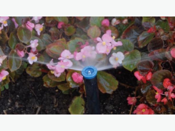 Irrigation Plus