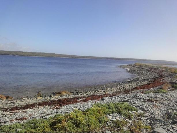 Nova Scotia Oceanfront