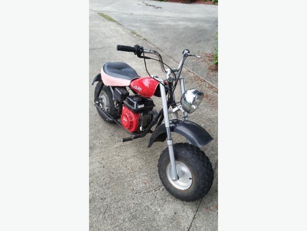 WANTED: baja mini bike
