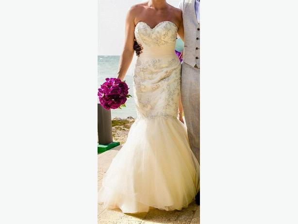 Glamorous Vintage Style Wedding Gown (with veil)