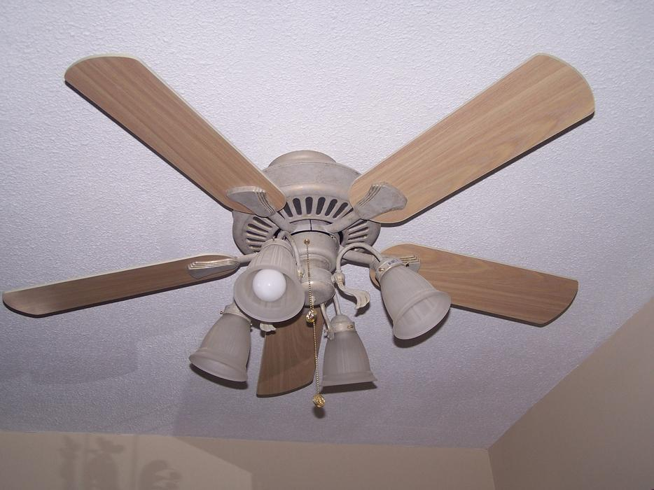Cameron Ii Plus Ceiling Fan 52 Inches Wide Central
