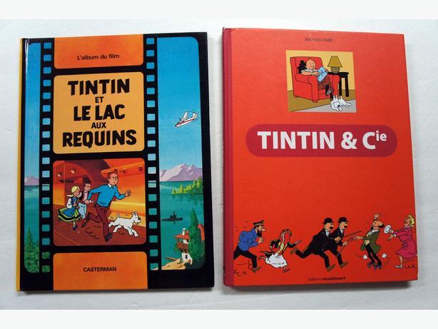Jouons avec TinTin, Tintin & Cie, Lac aux Requins