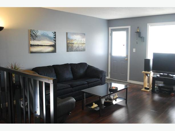 Completely Renovated Bi-Leveli in Regina's Normanview