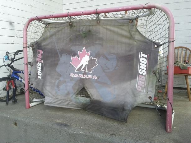 Hockey Net with Goalie Screen