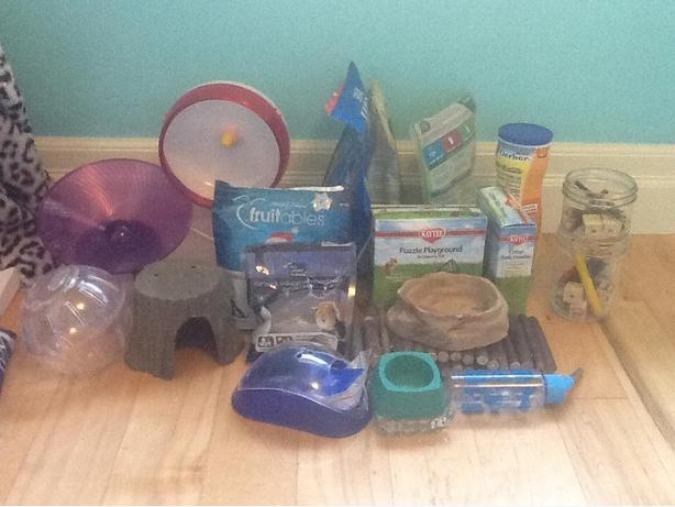 Hamster Accessories & Food **Reduced Again**